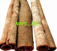 Tube Cassia Supplier from VIETNAM