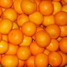 Fresh Tangerine/Mandarin Oranges