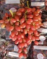 Sell Crimson Seedless Grape