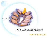shell mussel