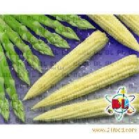 Baby Corn and Asparagus