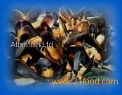 Bottom Dredged Mussels, Green Crab,Velvet Crab