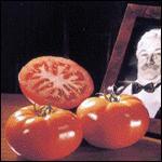 Tomatoes Baron