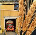 BUNGE MILLING PRODUCTS - WHOLE GRAIN