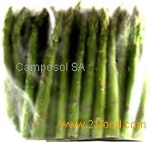 Green Asparagus - Spears IQF (Frozen)