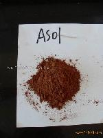Alkalized cocoa powder (AS01)