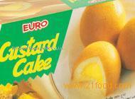 Euro Custard Cake
