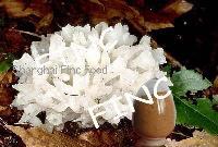 Tremella fuciformis extract, snow fungus extract