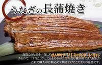 Roast Eel