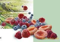 Fruit pur¨|es