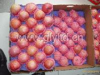 Qin guan apple1