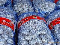 10kg/20kg/mesh bag garlic