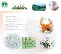 Huangshan  brand  chrysanthemum  of contribute
