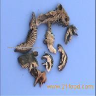 Rhizoma cimicifugae