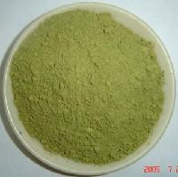 Green Tea Powder and extract juice powder