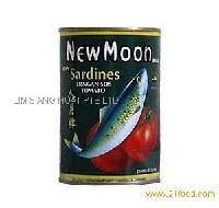 Sardines in Tomato