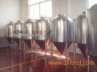 beer equipment-500Lfermentation tank