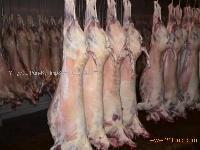Lamb Whole Carcass