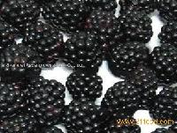 IQF blackberry