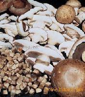 IQF mushrooms