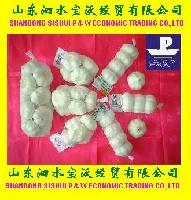 Many Specifications' Garlic