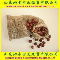 Chesnut-Gunny Bag