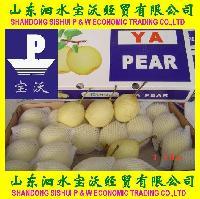 Ya Pear-4kg, 4.5kg, 5kg/carton