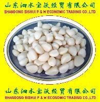Peeled Garlics