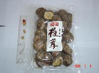 Dry Mushroom 4
