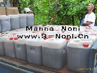 noni leaven,pure noni raw materials