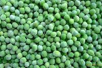 IQF Green Peas new crop