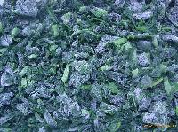 IQF Chopped Spinach HOT SELLING