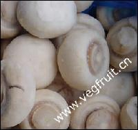 IQF mushroom