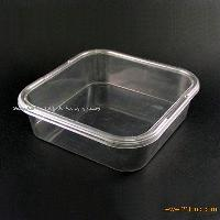 Disposable Plastic Food Container(Lunch Box-Small)