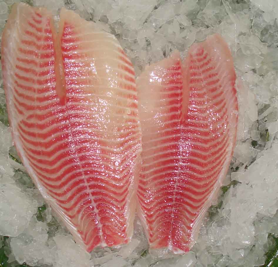 Frozen Tilapia Fillet Products China Frozen Tilapia Fillet Supplier