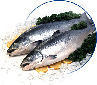 Salmon h&g, HO products,Russia Salmon h&g, HO supplier