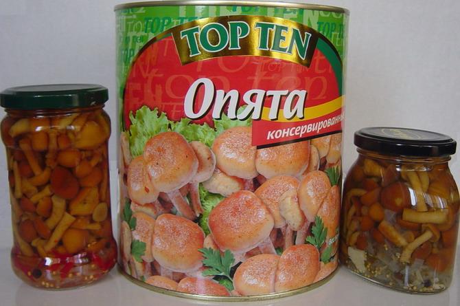 Canned Nameko Mushroom