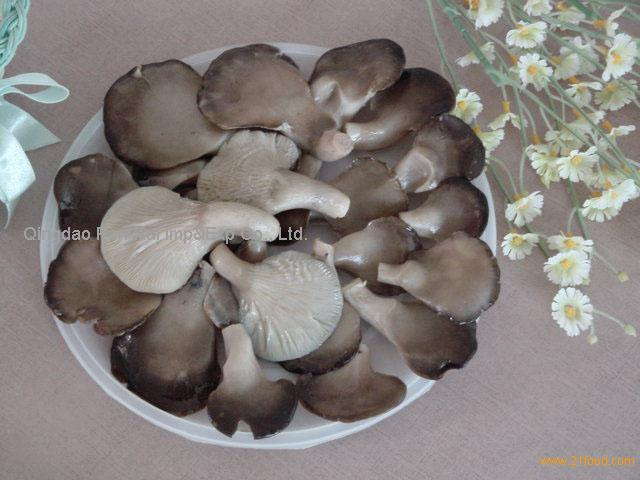 Baby Oyster Mushoom Products China Baby Oyster Mushoom