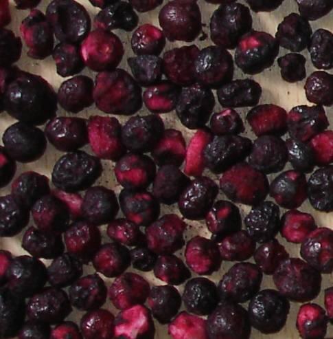 FD Blueberry