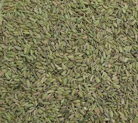 Fennel Seeds Images Fennel Seeds
